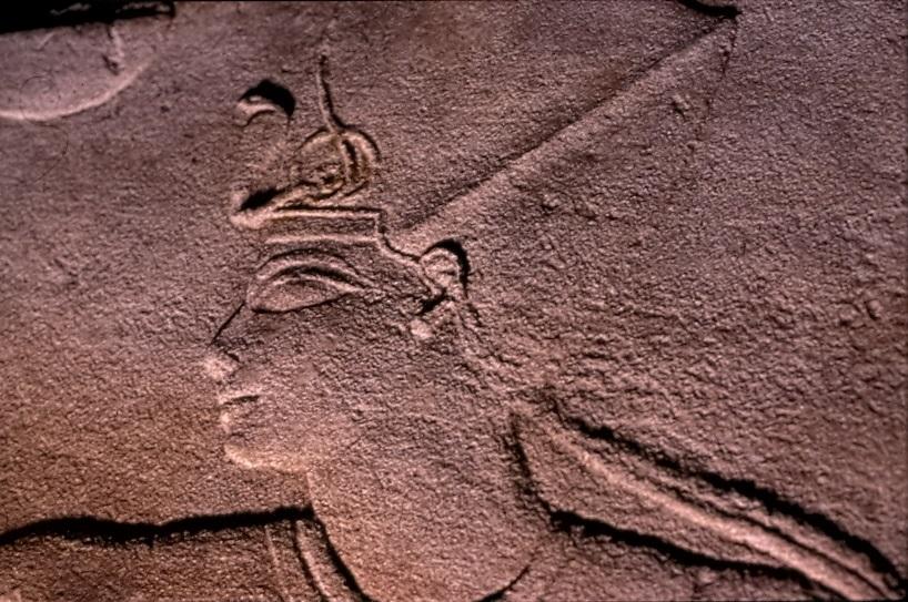 Particolare( Collezioni Egittologiche dell'Università di Pisa)