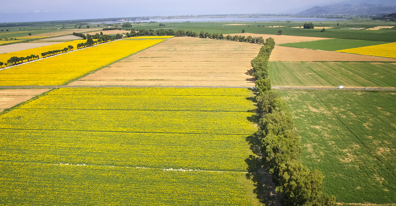 Aree agricole Fattorie di Vecchiano (Parco Regionale Migliarino, San Rossore, Massaciuccoli)