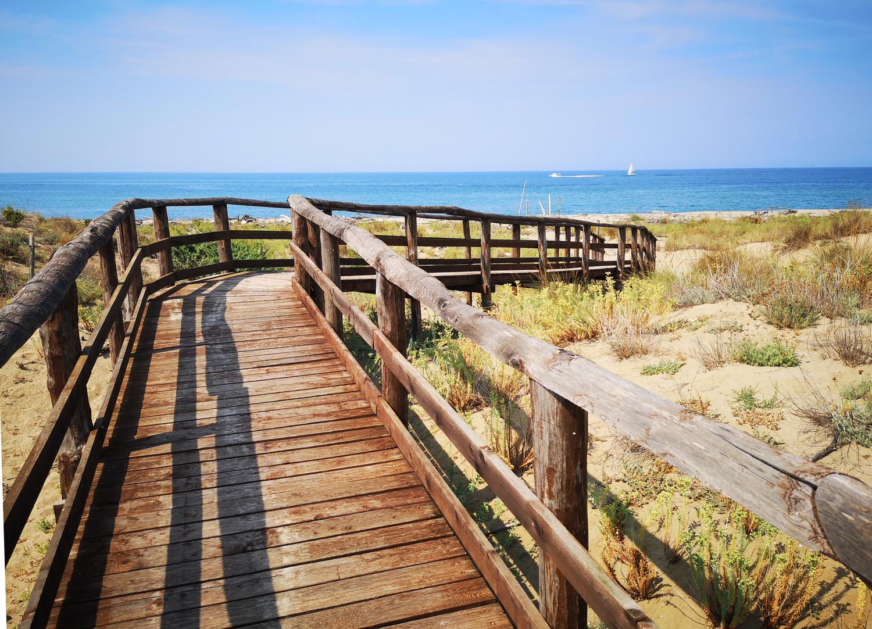 Camminamento in legno per raggiungere la spiaggia  (Parco Regionale di Migliarino, San Rossore, Massaciuccoli)