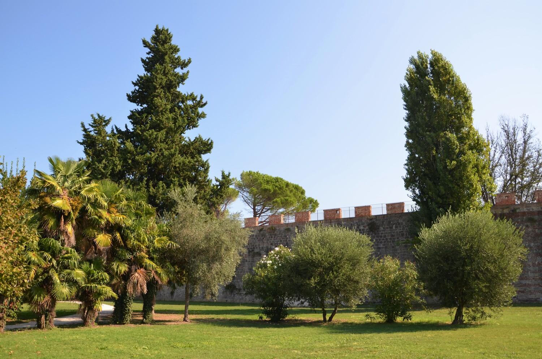 Panoramica parco delle Concette (L. Corevi, Comune di Pisa)