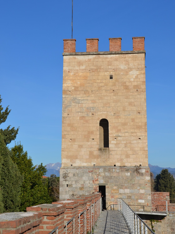 Torre Santa Maria ( da Mura di Pisa, www.muradipisa.it)
