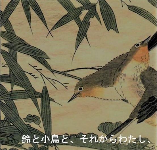 Particolare lingua giapponese Alif (da www.alif.it)