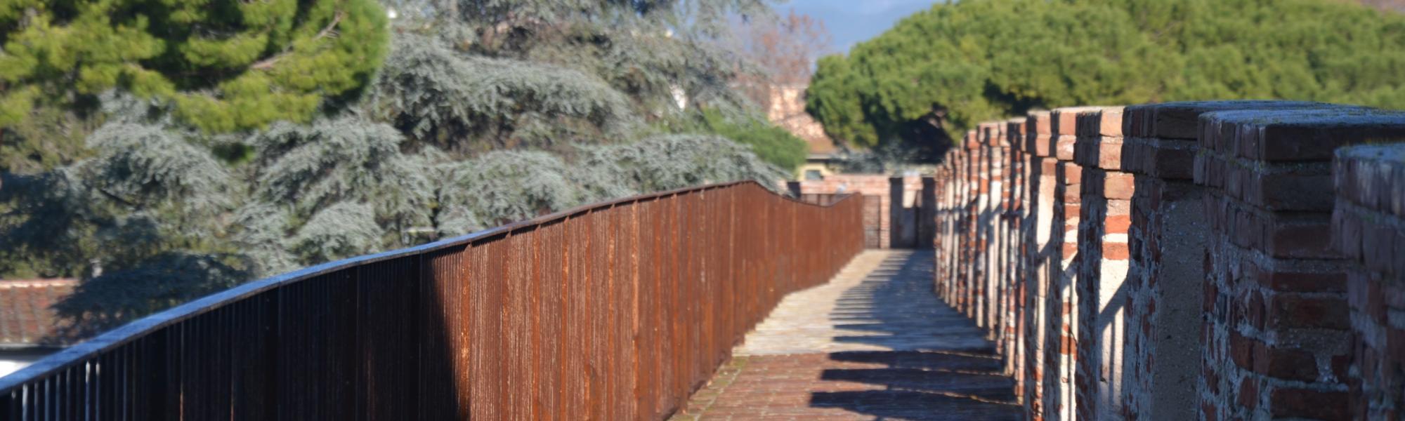 Mura (Mura di Pisa)