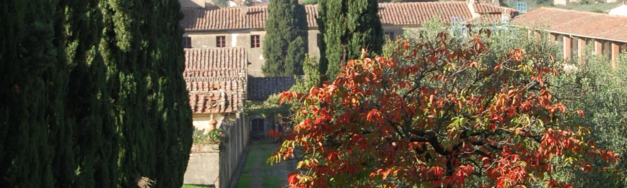 'Autunno in Certosa' Museo della Certosa di Calci (S. Battaglini)