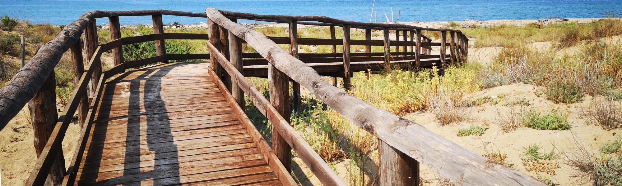 Camminamento in legno per raggiungere la spiaggia di San Rossore  (Parco Regionale di Migliarino, San Rossore, Massaciuccoli)