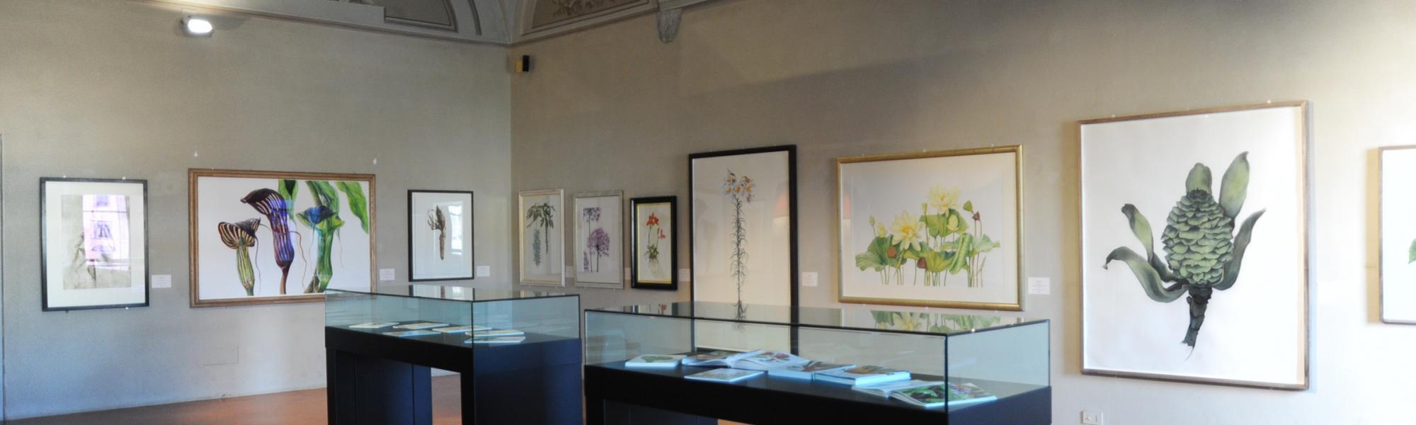 Sala interna palazzo Lanfranchi (Museo delle Grafica)