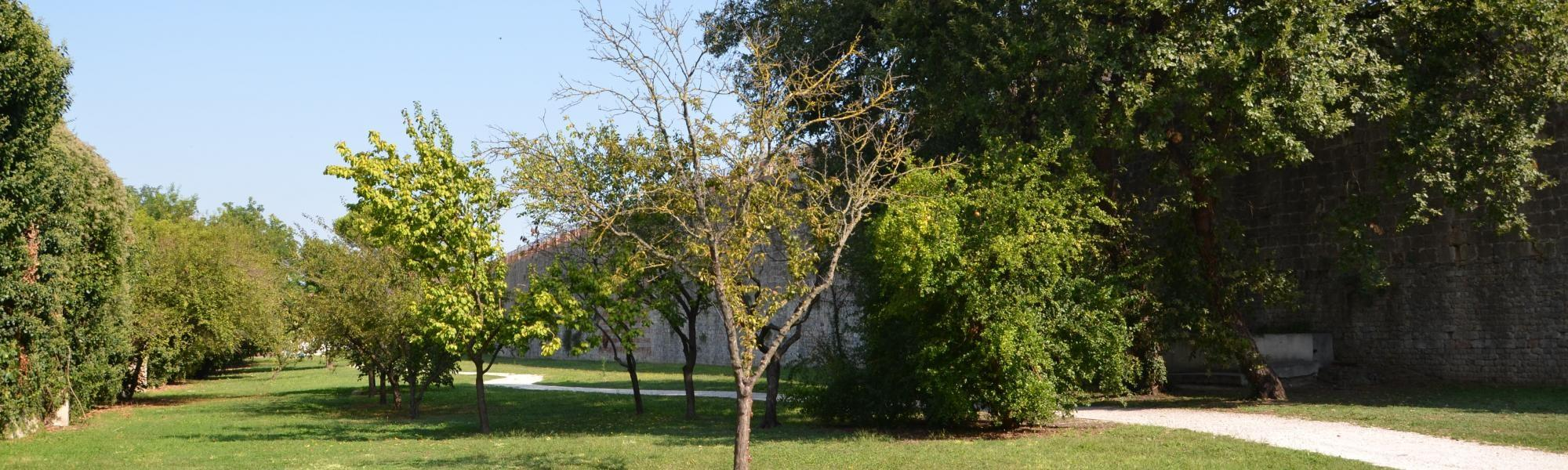 Bastione del Barbagianni e parco delle Concette (L. Corevi, Comune di Pisa)