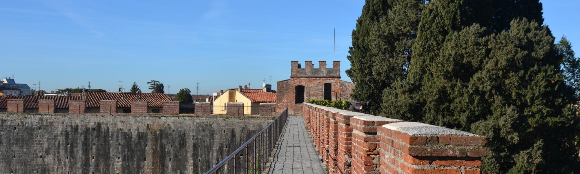 Torre del Catallo ( da Mura di Pisa, www.muradipisa.it)