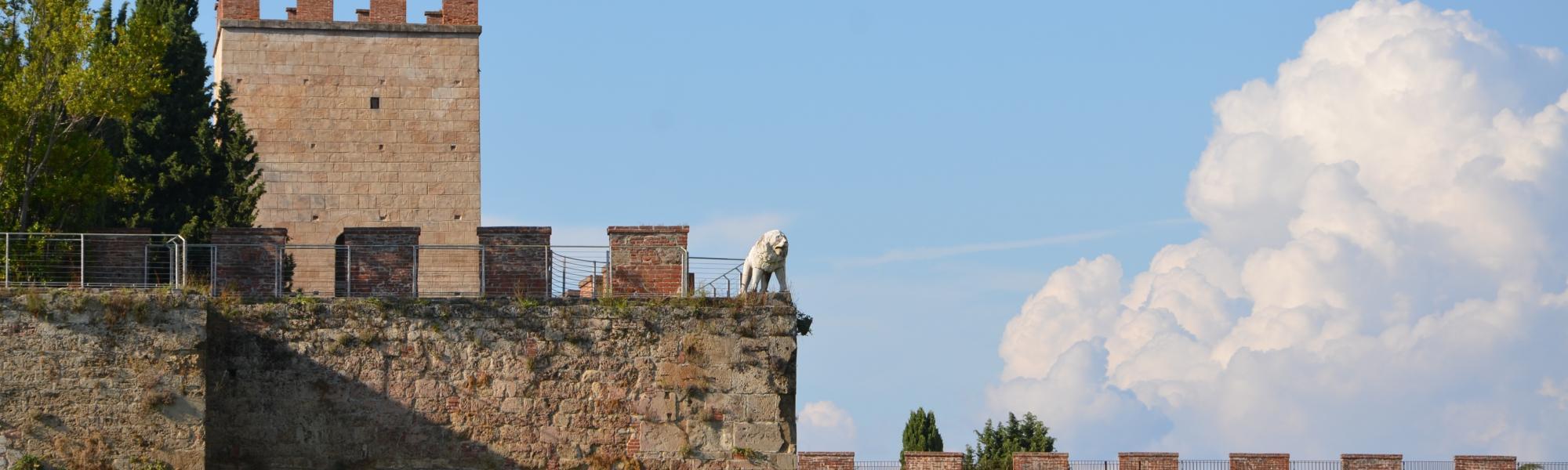 Scorcio Torre Santa Maria (L. Corevi, Comune di Pisa)