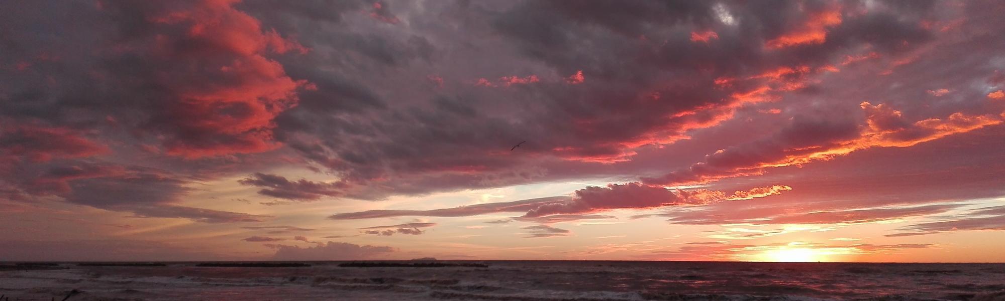 Spiaggia al tramonto (Parco Regionale Migliarino San Rossore Massaciuccoli)