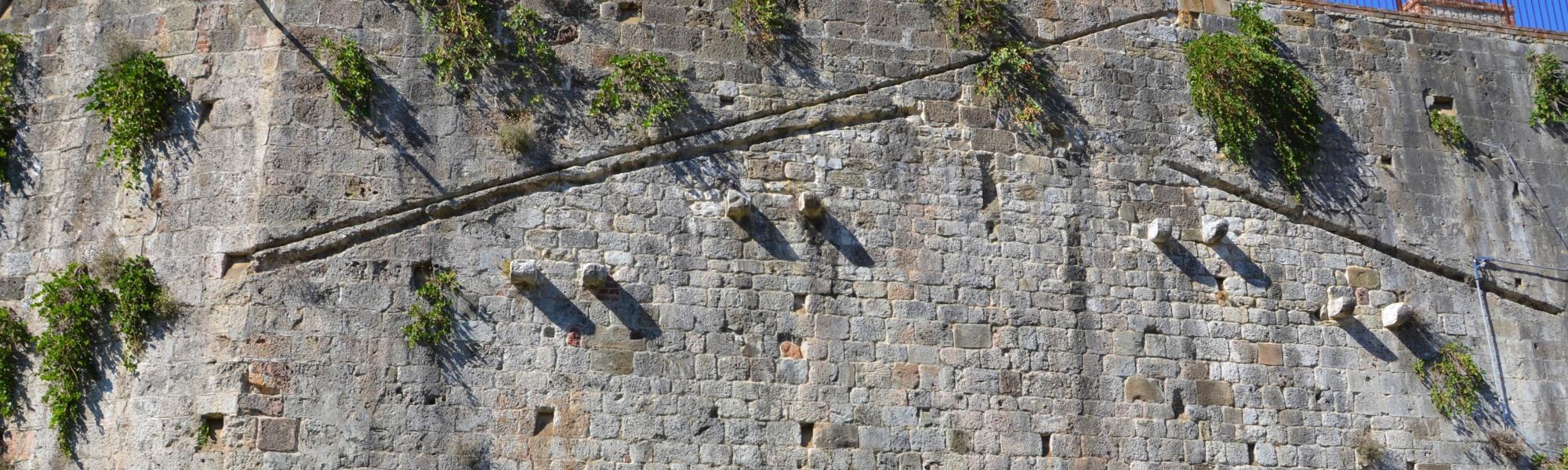 Fiori e piante  sulle mura (L. Corevi, Comune di Pisa)