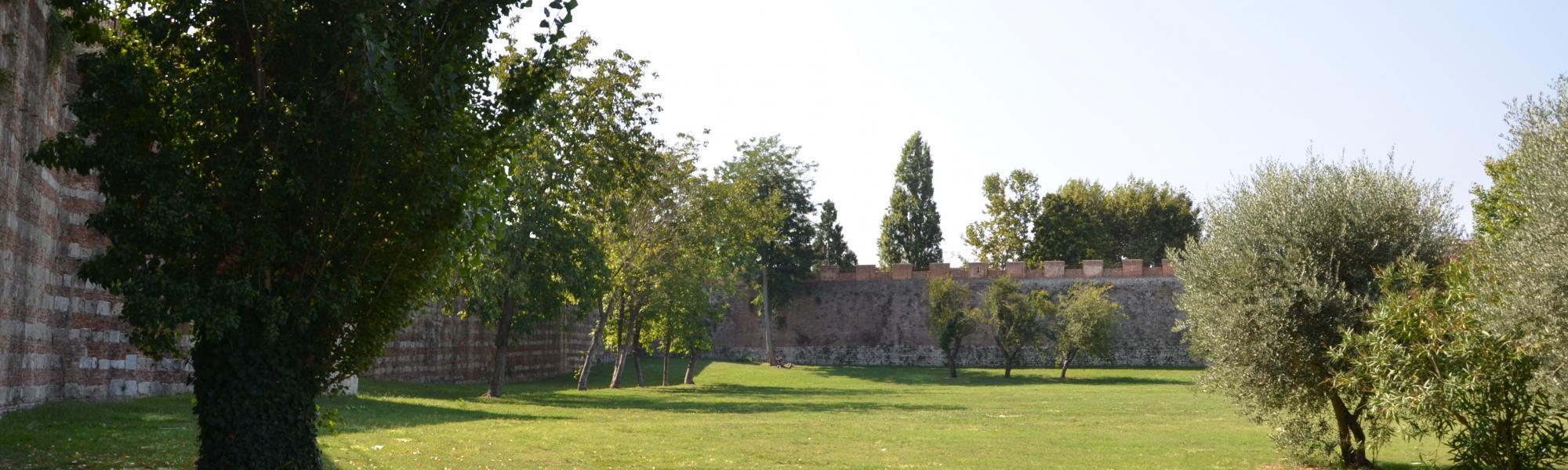 Veduta parco delle Concette (L. Corevi, Comune di Pisa)