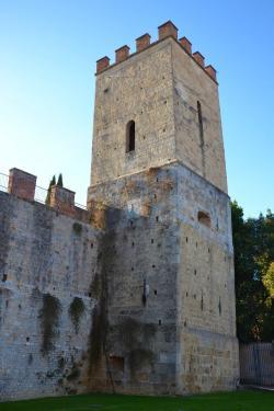 Torre, camminamento mura (da Mura di Pisa, www.muradipisa.it)
