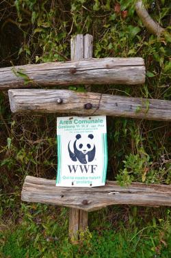 Oasi WWF Tirrenia (L. Corevi, Comune di Pisa)