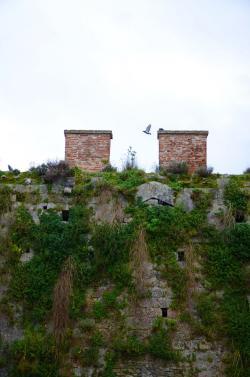 Porta San Martino (L. Corevi, Comune di Pisa)