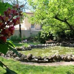 Orto Botanico 6 2