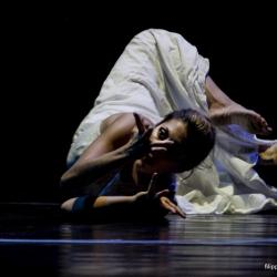 Undicesima Edizione di NavigArte a Pisa: riparte la danza dal vivo