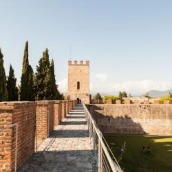 L'assedio di Pisa del 1500