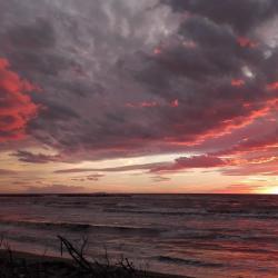 Spiaggia  al tramonto San Rossore (Parco Regionale Migliarino San Rossore Massaciuccoli)