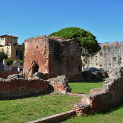 Terme di Nerone (L. Corevi, Comune di Pisa)