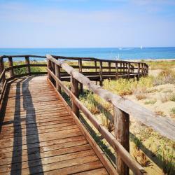 Camminamento in legno per raggiungere la spiaggia naturale di San Rossore (Parco di San Rossore)