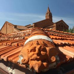 Chiesa e Chiostro di San Francesco dai tetti (A. Matteucci)