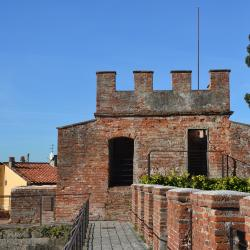 Torre del Catallo (da Mura di Pisa, www.muradipisa.it)