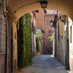 Arco in via della Foglia (L. Corevi, Comune di Pisa)