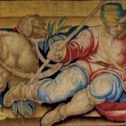 Particolare Arazzo, Museo (Museo Nazionale di Palazzo Reale)