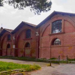 Arsenali medicei (Museo della Navi Romane)