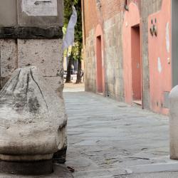 Cippo etrusco pririforme reimpiego antico _ Via San. Martino(G. Bettini, Comune di Pisa)